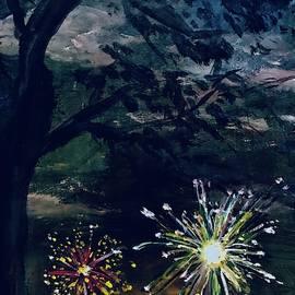 July 4th Fireworks  by Lavender Liu