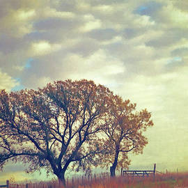 Kansas Autumn Countryside and Sky by Anna Louise