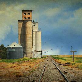 Kansas Grain Elevator by R christopher Vest