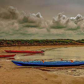 Kayak Time by Marcy Wielfaert