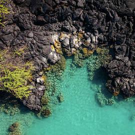 Kiholo Bay Coastline by Christopher Johnson