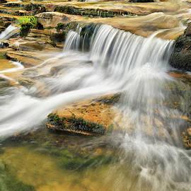 Kings River Falls - Arkansas Ozark National Forest by Gregory Ballos