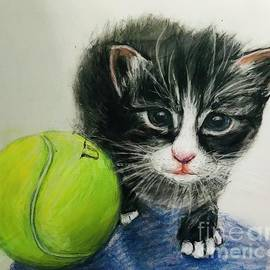 Kitten and Tennis Ball by Lavender Liu