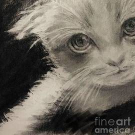 Kitten by Lavender Liu