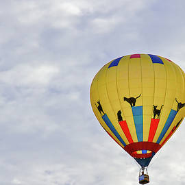 Kitty Hot Air Ballon by Jack R Perry