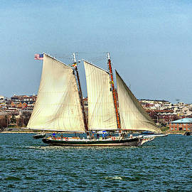 Lady Maryland Schooner In Baltimore Harbor by Bill Swartwout Photography