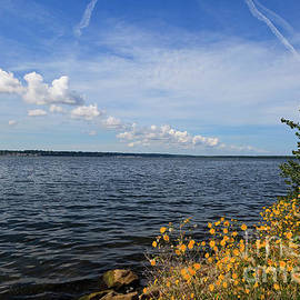 Lake Erie In The Summer From The Presque Isle State Park by Jill Lang