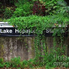 Lake Hopatcong Station by Mark Miller