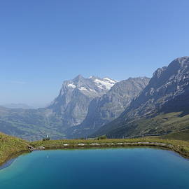 Lake in the Alps Region by Patricia Caron