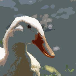 Judy Foote-Belleci - Lake Lingerer ...