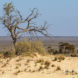 Lake Mungo 01 by Werner Padarin