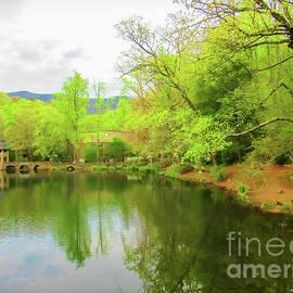 Lake Susan At Black Mountain by Roberta Byram