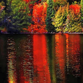 Lakeshore Reflections Tall by Terril Heilman