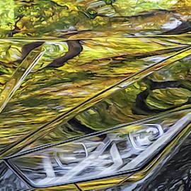 Keith Smith - Lamborghini Fall Reflections