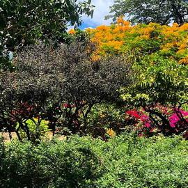 Landscape in Waikiki by Neal Alicakos