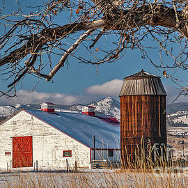 Large White Barn With Silo by Sue Smith