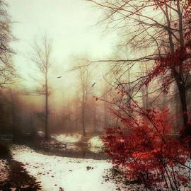 Last Copper- Misty Winter Day by Dirk Wuestenhagen
