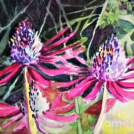 Last of the Echinacea by Mindy Newman