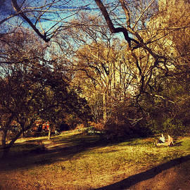 Late Afternoon in Early Spring - Central Park New York by Miriam Danar