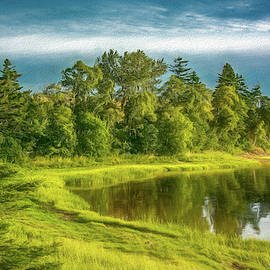 Late Summer Morning At The Pond by Marcy Wielfaert