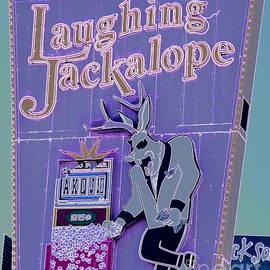 Tru Waters - Laughing Jackalope