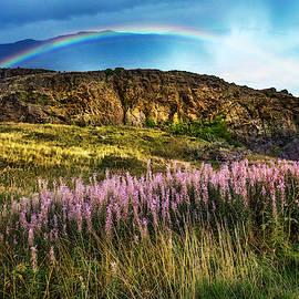 Lavendars on the Hills by Debra and Dave Vanderlaan