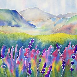 Fresh Lavender by Mary Giacomini