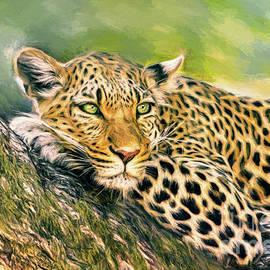 Lazy Leopard by Tina LeCour