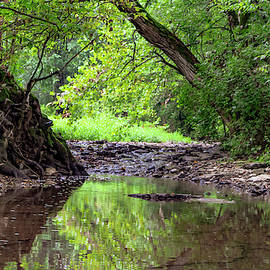 Josh Gooch - Leaning Creek