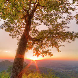 Leaning Into Sunset by Debra and Dave Vanderlaan