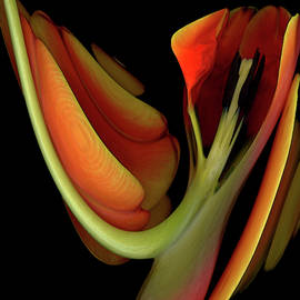 Leaning Tulip by Carel Schmidlkofer