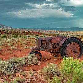 Left Alone In The Desert by Marcy Wielfaert