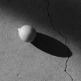Lemon Shadow by Bill Tomsa
