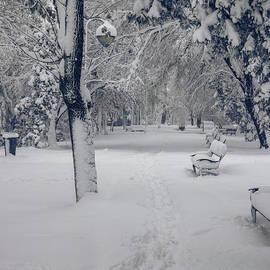 Claudia M Photography - Let it snow