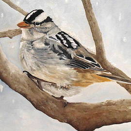 Let It Snow - White-crowned Sparrow by Angeles M Pomata