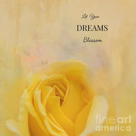 Let Your Dreams Blossom by Eva Lechner