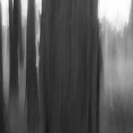 Guillermo Lizondo - Life in black and white