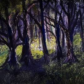 Light in the Forest by Anne Sands