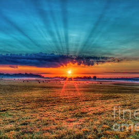 Light Of The World Sunrise Oconee County Georgia Farming Art by Reid Callaway