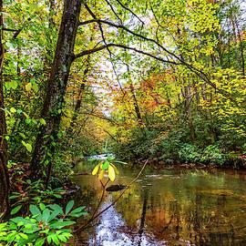 Light on the Stream by Debra and Dave Vanderlaan