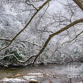 Light Snow On Cranberry River by Thomas R Fletcher