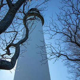 Lighthouse Up by Cynthia Alvado