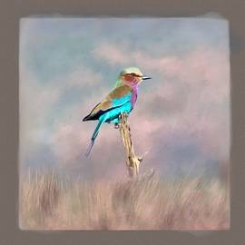 Lilac-Breasted Roller by Donna Kennedy