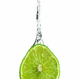 Lime Juice 2 by Sandi Kroll
