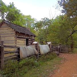 Lincoln's Boyhood Homestead by Carmen Macuga