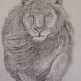 Lion by Christy Saunders Church