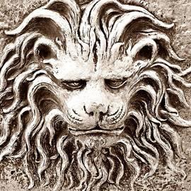 Lion Head by Linda Covino