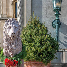 Lion Statue - Biltmore Estate by Dale Powell