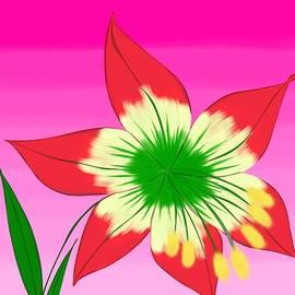 Lirio Flower by Carlo Fuentes