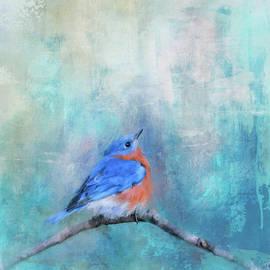 Little Boy Blue by Jai Johnson